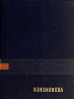 Konsmoboka